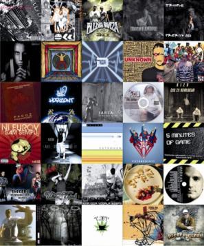 Izbor tridesetih raperskih albumov, ki so izšli v letu 2010