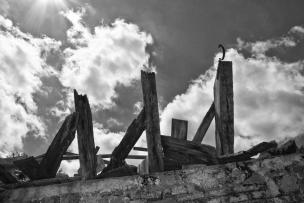 Izpraznjene in razpadajoče hiše kočevskih Nemcev