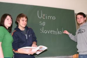 Poučevanje slovenščine v šoli